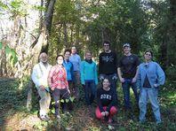 17A acre wood