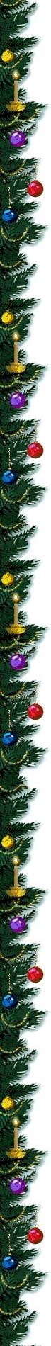 treeborder 3