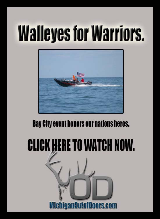 WalleyesForWarriors