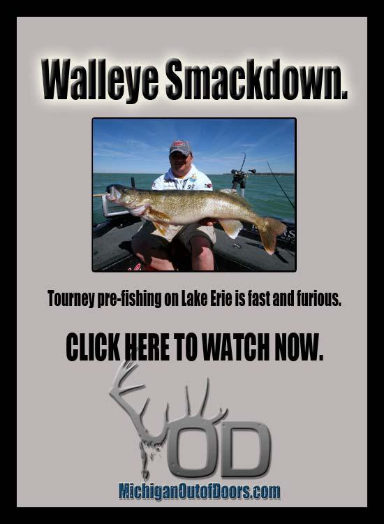 Walleye-OD