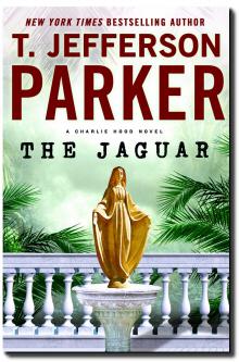 cover_jaguar_newsletter 3