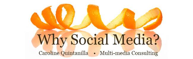 Why Social Media? masthead