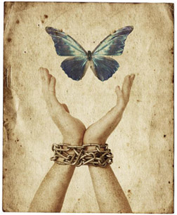 Freedom's Ransom image
