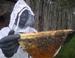 beekeeper_KTBH_75x58