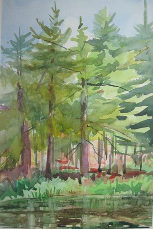 Water plus Color at Adirondack Artists Guild