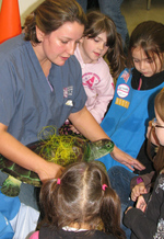 Children learn about sea turtle conservation.