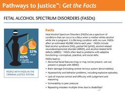 fasd and CJ fact sheet