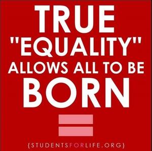 153 equality 3