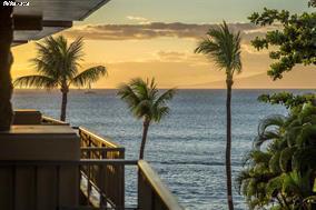 Paki Maui 327
