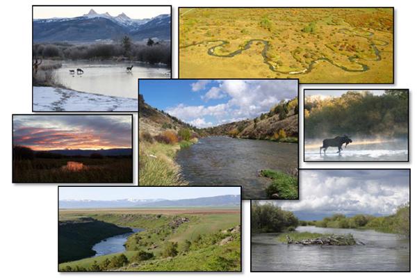 Many Landscapes  2