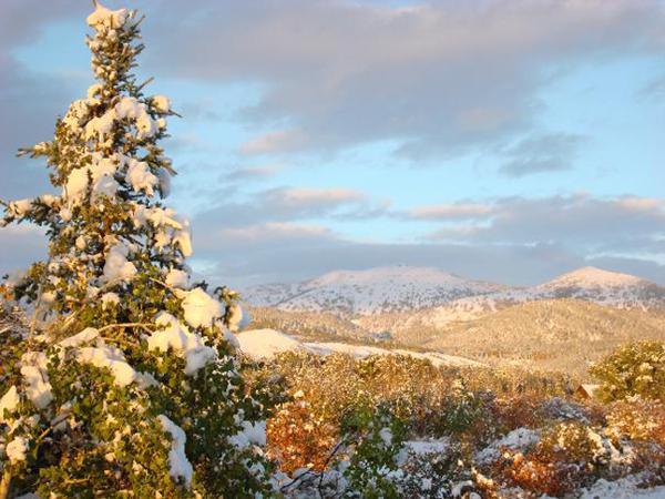 snowy scene 2