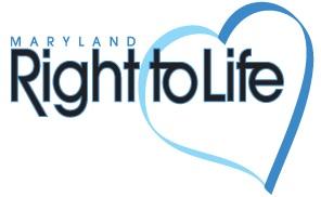 MDRTL Logo.jpg