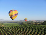 ballooning over vineyards
