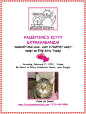 Click to Read about Valentine Kitty Extravaganza
