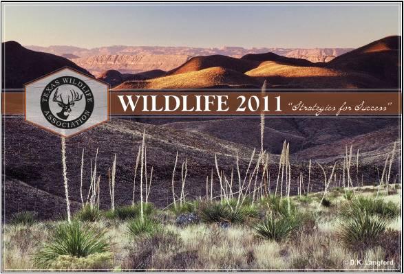 WildLife 2011