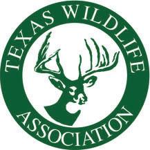 TWA color logo