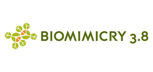 Biomimicry 3.8 Institute: April 2013 Newsletter