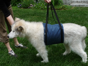 Walkin Support Sling for Paralyzed Pets
