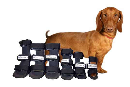 Walkin Wheels Splints for Dogs and Cats