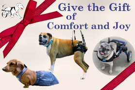 Gift Certificates for Handicapped Pets