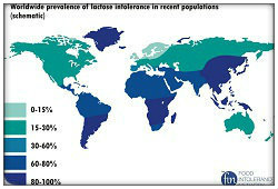 Map of lactose                               intolerance levels