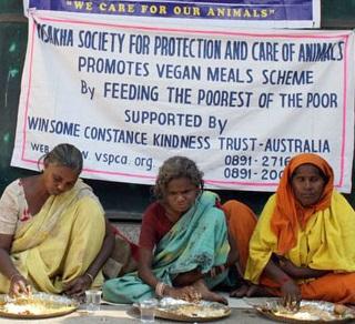 Vegan feeding                             program in India