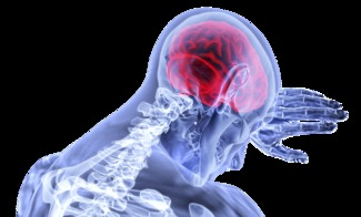 brain-3168269_1920 by VSRao PIXABAY Free Lic CC0 2