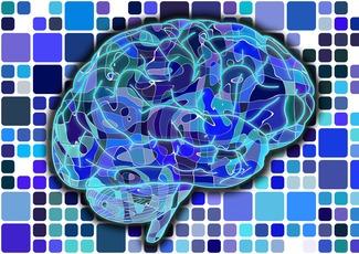 brain-951845_1920 by Geralt PIXABAY Free Lic CC0