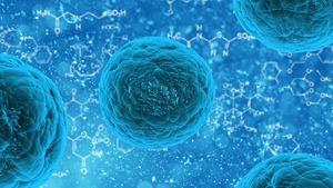 FREE USE CC00 Pixabay stem-cell-163711_1280