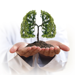 Tree-Lungs shutterstock_243445249 PAID LIC
