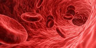 blood-1813410_1920 by qimono at Pixabay FREE LIC CC0