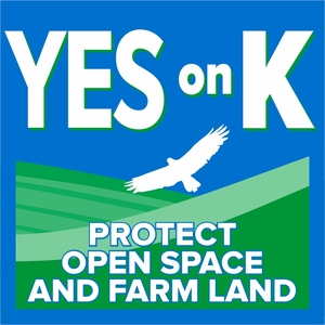 Yes on K