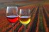 vinograd_kozarca_z_vinom_2842_orig peq