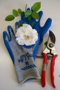 Gloves and flower 2012 120x180