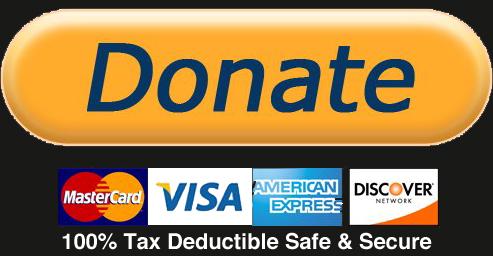 Donate Spandana Foundation