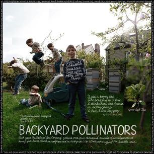 backyardpollinators
