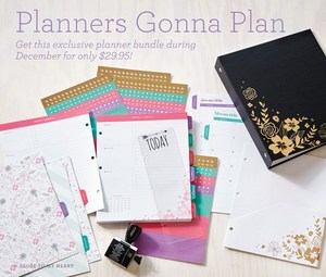 1512-cc-planners-gonna-plan-us
