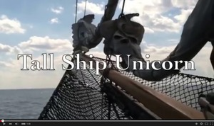 Tall Ship Unicorn for Sale YouTube