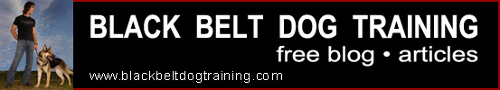 blackbeltdogtrainingbanner