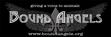 boundangelsEM