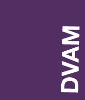 NEWSupdate-DVAM 2