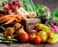 banner-nutrition 2