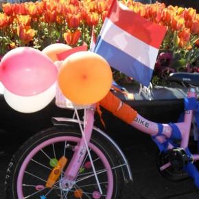 koninginnedag_fiets-290x290 2