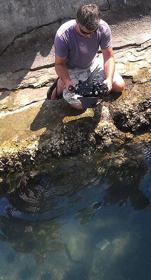 Matt Wittenrich shooting Banggai Cardinalfish, Luwuk Hrbour