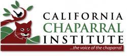 CCI logo New small