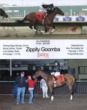 Zippity Goomba WIN 2.1.14