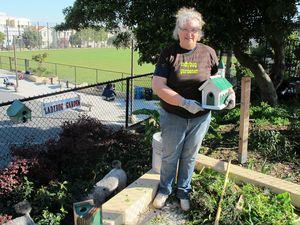 joan ladybug gardener