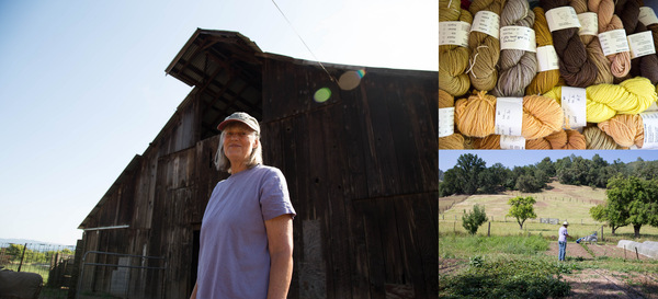 Red Creek Farm blog