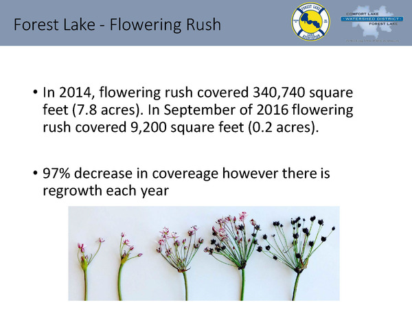 CLFLWD - 2016 Forest Lake Activities -Word Document_Page_20