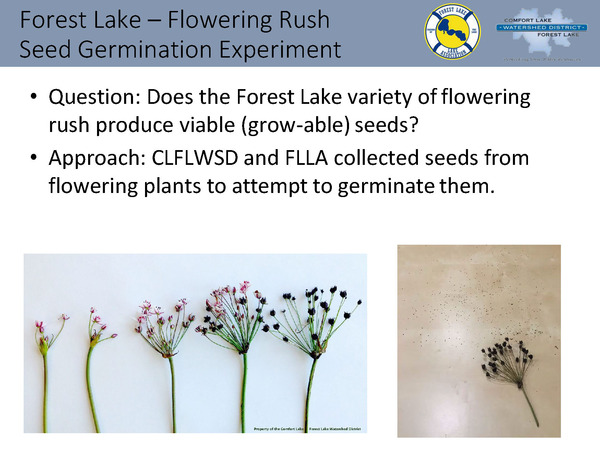 CLFLWD - 2016 Forest Lake Activities -Word Document_Page_25